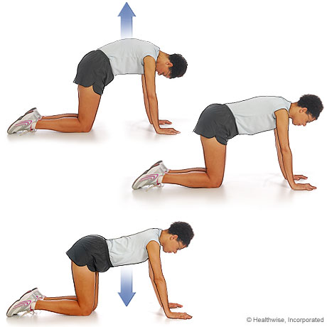 Picture of how to do the cat-camel exercise