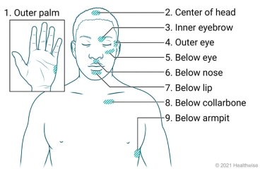 Location of the tapping points on the hand, head, and torso.