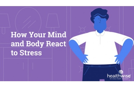 How Your Body Reacts to Stress