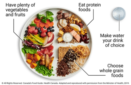 Sample meal plate showing 1/2 plate vegetables and fruit, 1/4 plate protein foods, and 1/4 plate whole grain foods, with water as drink